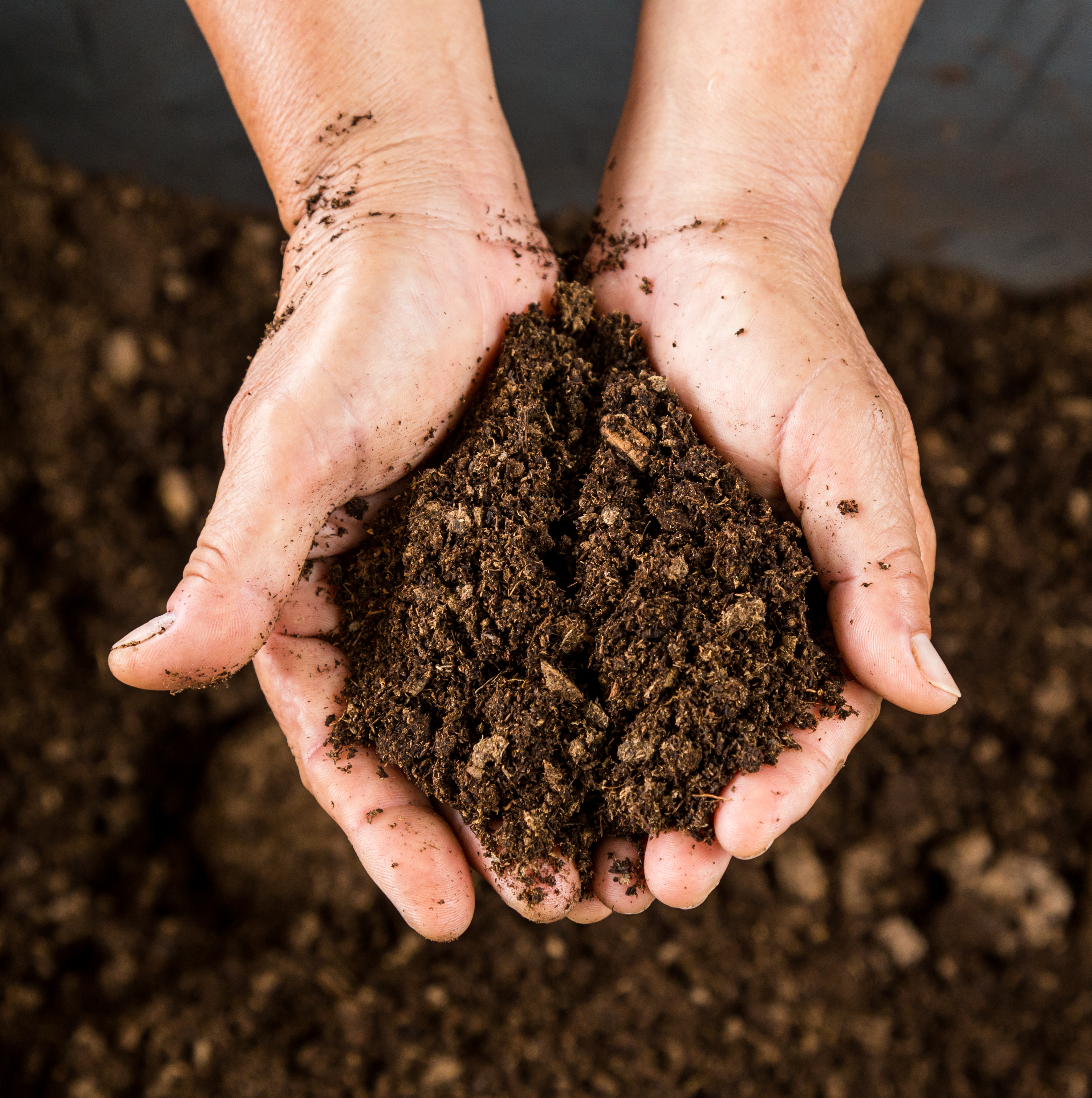 Compost met hand1